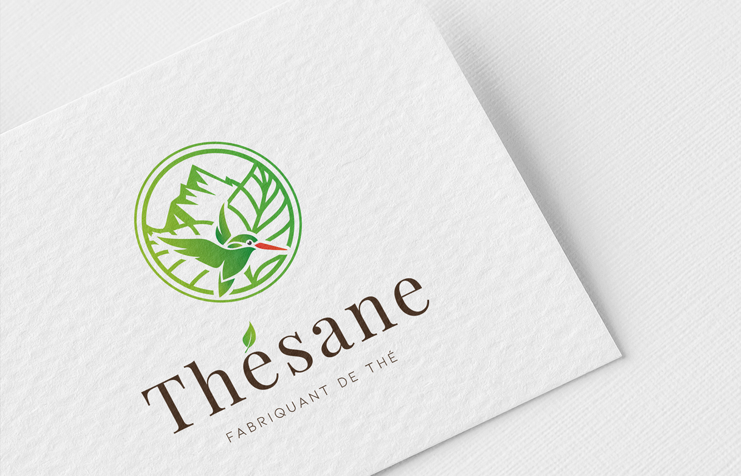Logo Thesane